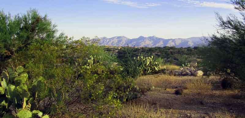 Northern Views From 'Lot 9' a 2.72 Acre Ridge Top Parcle in Rancho Cnacon